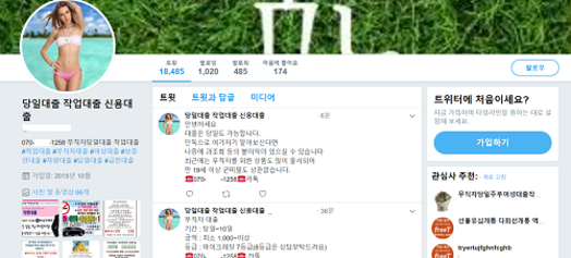 SNS에 올라온 작업대출 홍보글 / SNS 갈무리