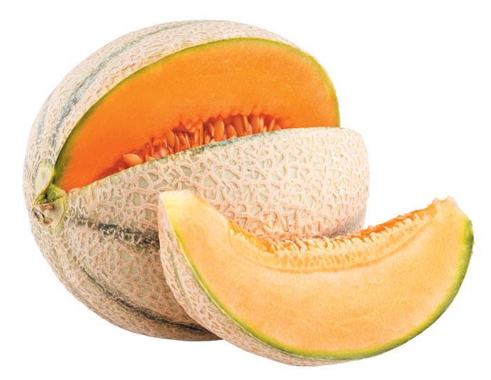 칸탈로프 멜론 추출물, 피부보호·혈관보호 높여