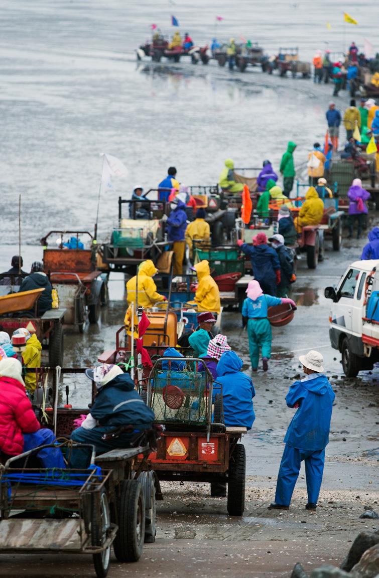 귀어 1번지 보령… 지원센터 설치해 어촌계 진입장벽 완화