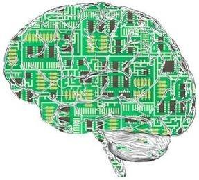 인간의 뇌에 전자칩을 이식시킨 모습 /조선DB
