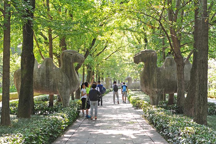 명효릉 묘소로 가는 길엔 24마리의 석상이 지키고 서 있다.