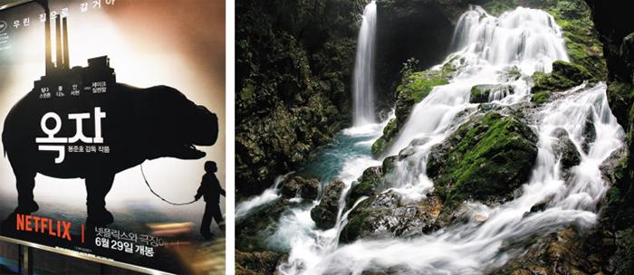 영화 '옥자'(왼쪽)에 등장하는 삼척시 도계읍 무건리 이끼폭포.