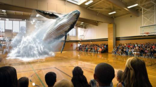 매직리프가 체육관에서 선보인 고래가 뛰어오르는 3차원 입체 영상 캡처화면. / 매직리프 캡처