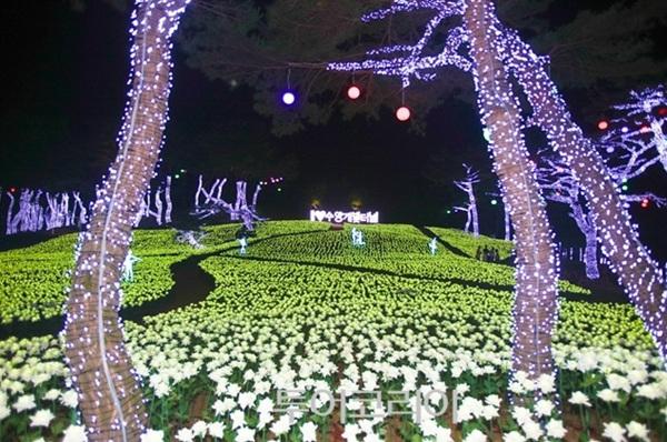 수양개 빛터널 비밀의 정원