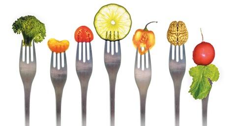장 박테리아 분석해 개인별 음식 궁합 찾아낸다… 新식품 비즈니스