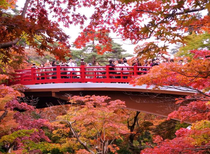알록달록한 단풍으로 물든 니가타의 일본식 정원./롯데관광 제공