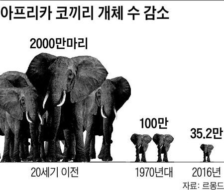 [월드 톡톡] 코끼리 씨 말리는 왕서방의 상아 욕심