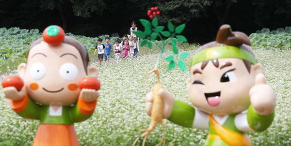 메밀꽃밭에서 남기는 추억