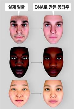 실제 얼굴과 DNA로 만든 몽타주 비교 그래픽