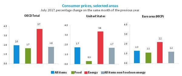 한국의 '밥상 물가' 상승률, OECD 회원국들 평균의 3.3배에 달해