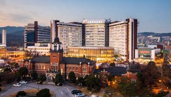 서울대병원 전경 / 서울대병원 제공