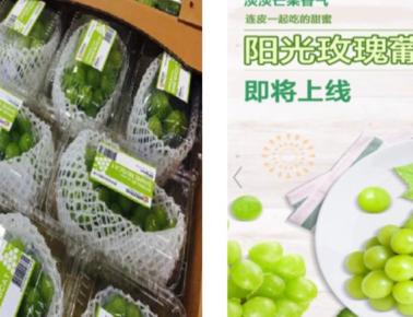 중국의 신선식품 온라인쇼핑몰을 통해 첫 수출하게 된 샤인머스켓 포도 /aT 베이징 지사