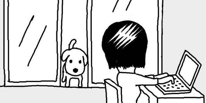 [일사일언] 무심한 강아지