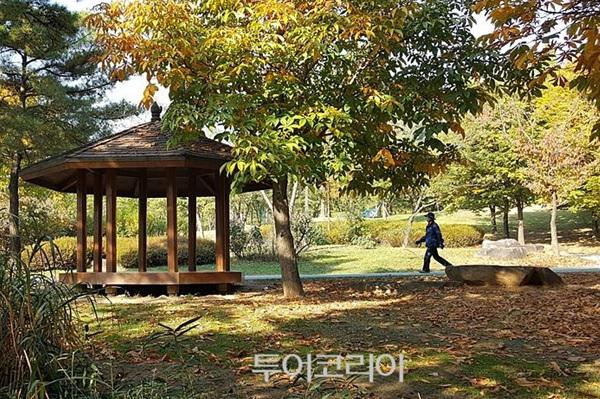 평화의 공원 '단풍 절정'