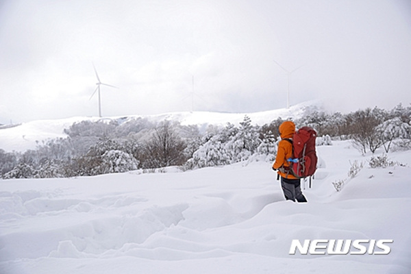 선자령길, 강원 강릉 바우길 1코스