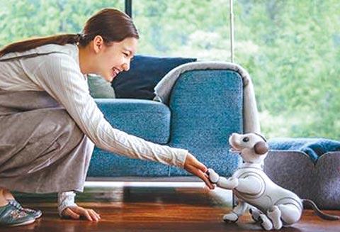 주인 칭찬에 애교 부리는 로봇 강아지