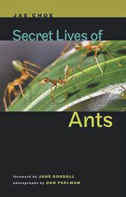 2012년 미국 존스홉킨스 대학 출판부에서 나온 최재천의 'Secret Lives of Ants'. 지난 5년 간의 판매 부수가 지난 18년간 베르베르의 '개미' 영문판의 판매부수를 웃돈다.