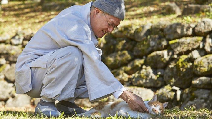 송광사 보경 스님은 애정 가득한 시선으로 보고 있지만 냥이는 딴청 부리고 있다.
