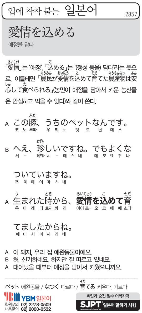 [입에 착착 붙는 일본어] 애정을 담다