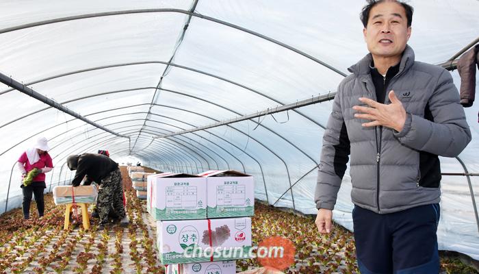10일 오전 경기도 이천시 백사면에서 상추 농장을 운영하는 김남용(54)씨가 최저임금 인상으로 늘어난 농가 부담에 대해 설명하고 있다. 김씨 뒤에선 캄보디아 출신 외국인 근로자 2명이 수확한 상추를 상자에 담고 있다. 이들 월급은 지난해 174만원에서 올해 203만원 수준으로 29만원 올랐다.