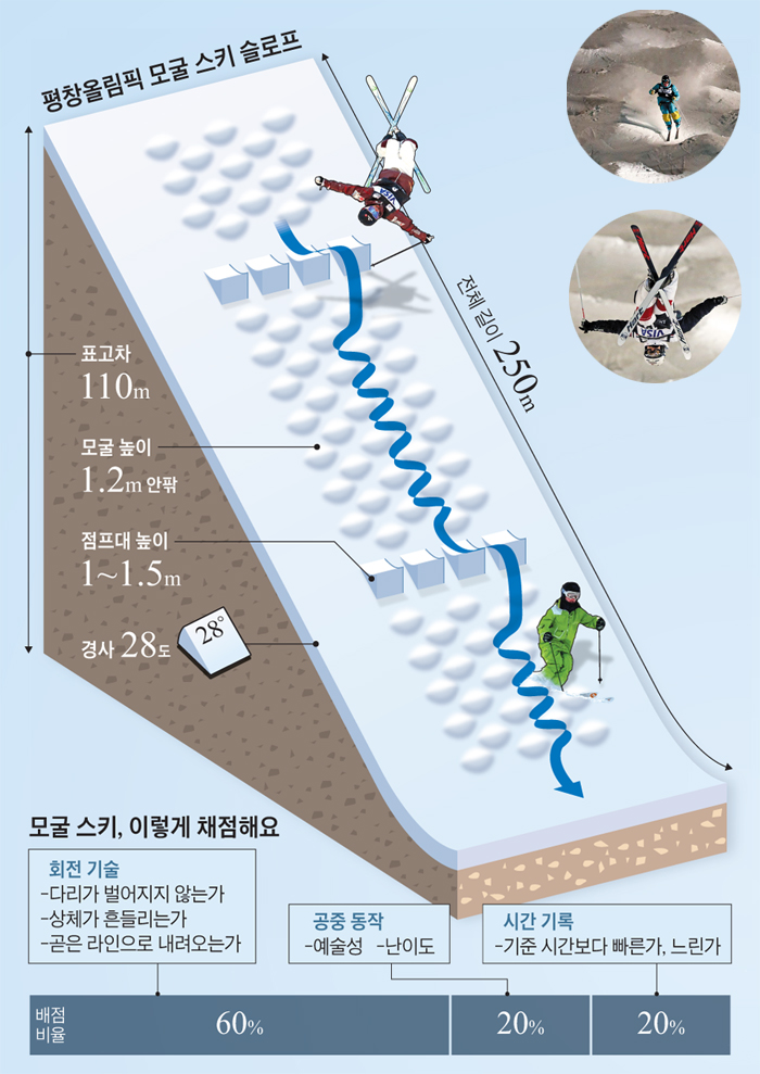 모굴 스키 슬로프 그래픽
