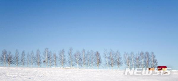 일본 홋카이도 비에이 설원.