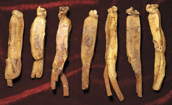 과학이 찾은 홍삼의 진짜 이름, '컴파운드K'
