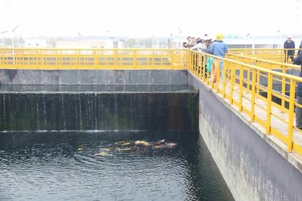 중한석화가 폐수처리시설의 깨끗한 수질을 보여주기 위해 물고기를 키우고 있다. /우한=오광진 특파원