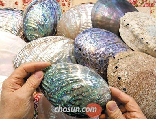 나전칠기 재료 전복 껍데기'국선옻칠'에서 나전칠기 공예에 사용하는 전복 껍데기.