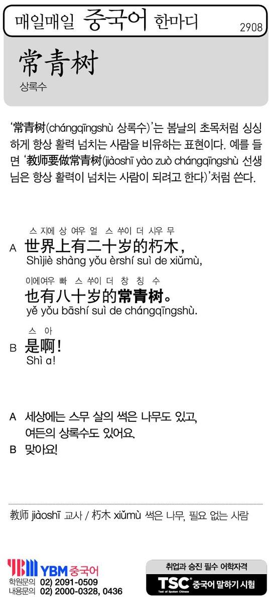 [매일매일 중국어 한마디] 상록수