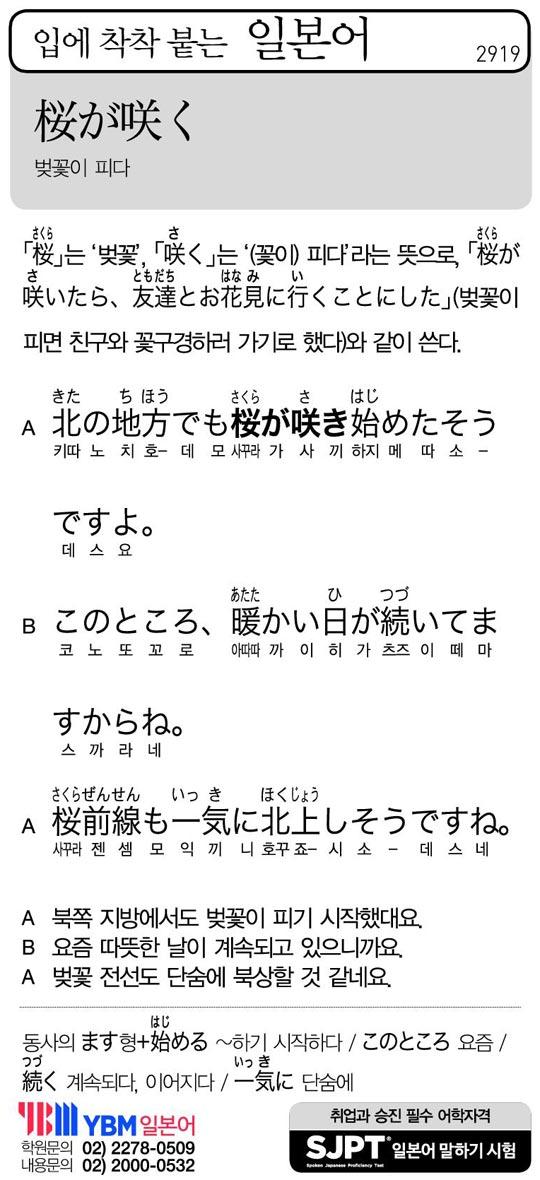 [입에 착착 붙는 일본어] 벚꽃이 피다