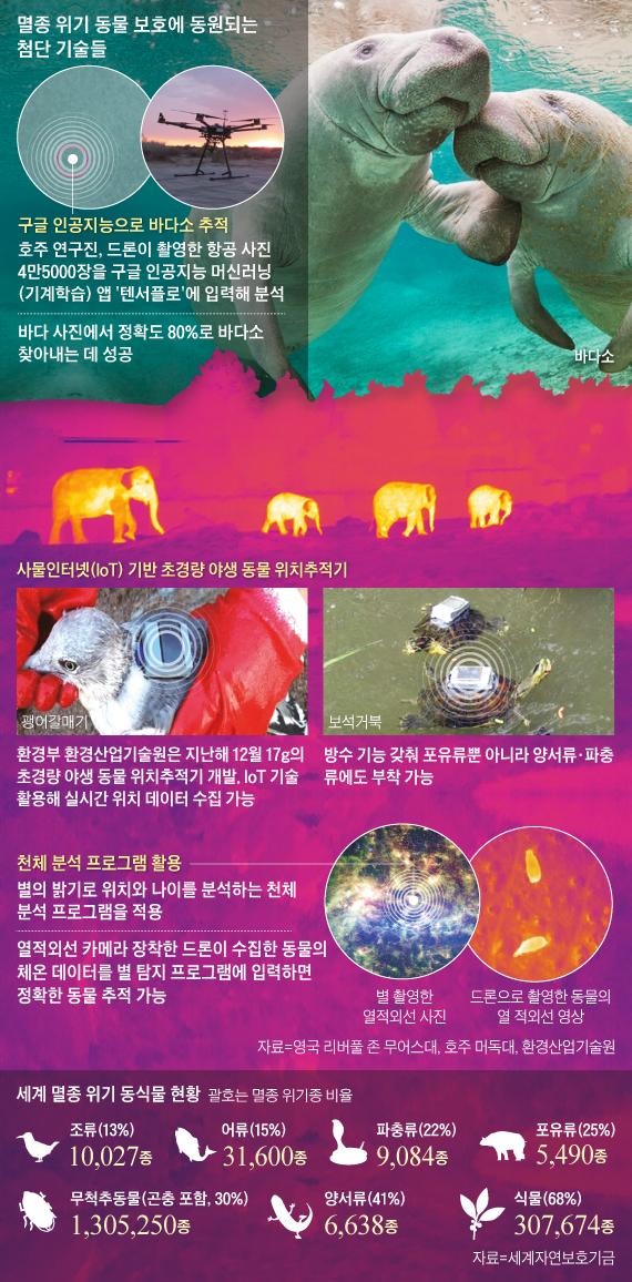 멸종 위기 동물 보호에 동원되는 첨단 기술들