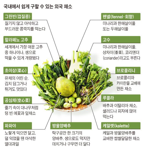 국내에서 쉽게 구할 수 있는 외국 채소