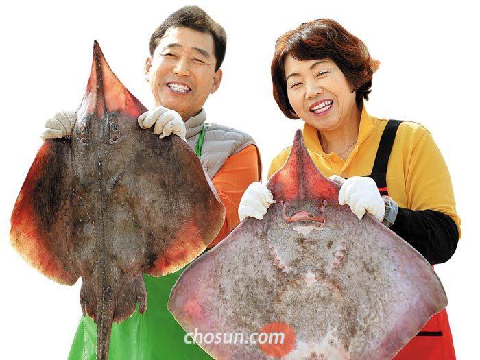 영산포 홍어 거리에서 홍어를 들어 보이는'홍어세상'2호점의 양승호·손순희 부부.