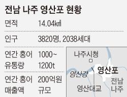 전남 나주 영산포 현황