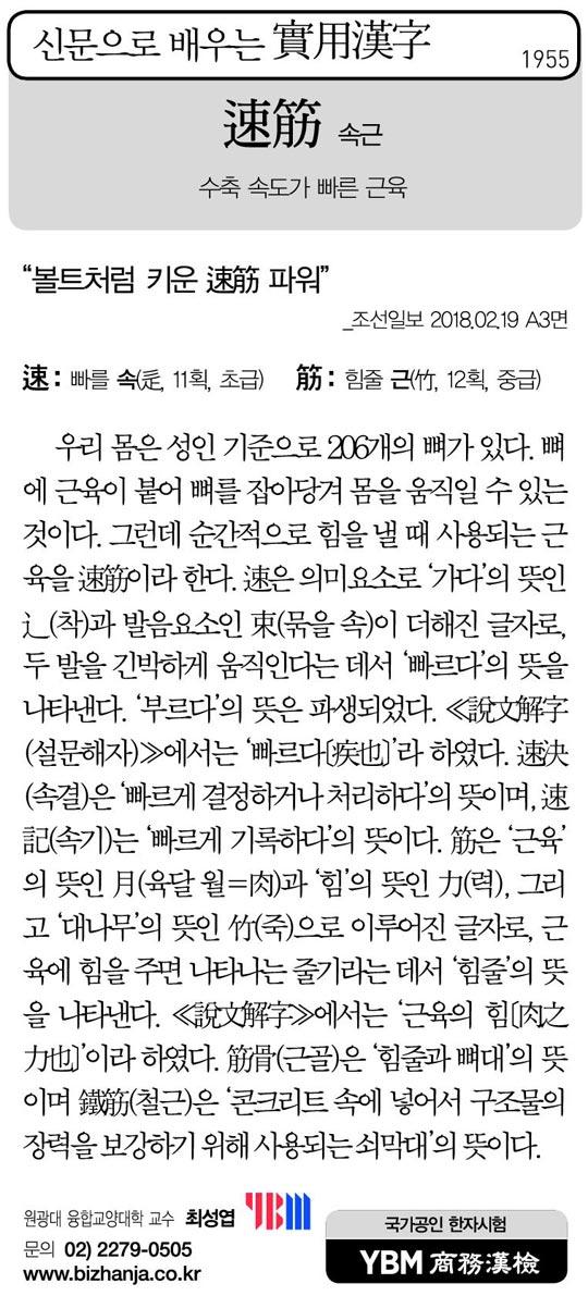 [신문으로 배우는 실용한자] 속근(速筋)
