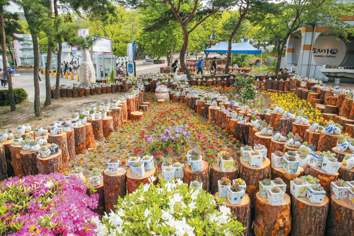 축제장에는 이천 시민과 방문객이 함께 만들어가는 2천 개의 화분이 전시될 예정이다.