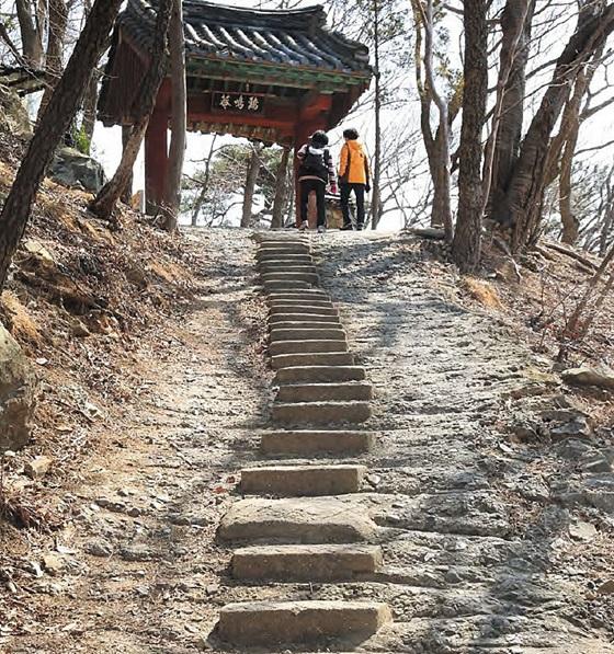 부산 금정구 범어사(梵魚寺)의 계명암으로 가는 방문객들이 돌계단을 오르고 있다. 계명암은 부산의 순례길 중 범어사 11암자길 구간에 있는 암자다.