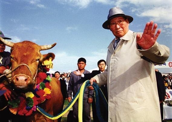 정주영 현대그룹 명예회장이 1998년 6월 소떼를 이끌고 북한을 방문했다./현대그룹 제공