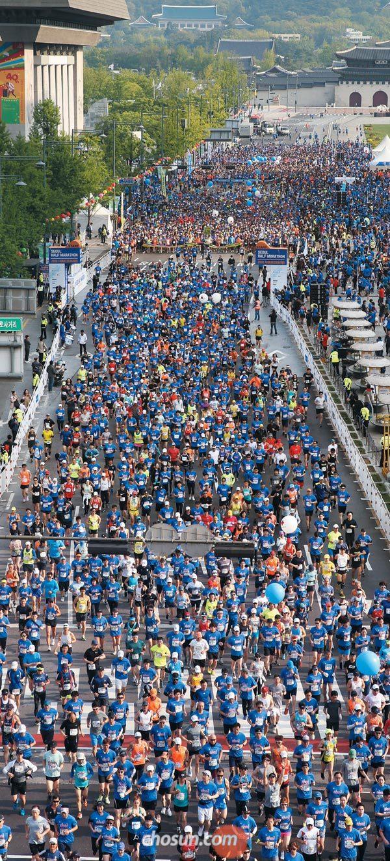 서울의 봄을 달렸다… 1만2000명이 함께 뛴 서울하프마라톤