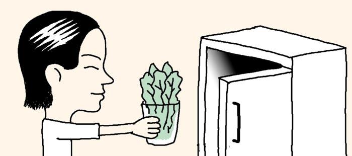 [리빙포인트] 눌리기 쉬운 야채 보관하려면