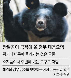 반달곰이 공격해올 경우 대응 요령