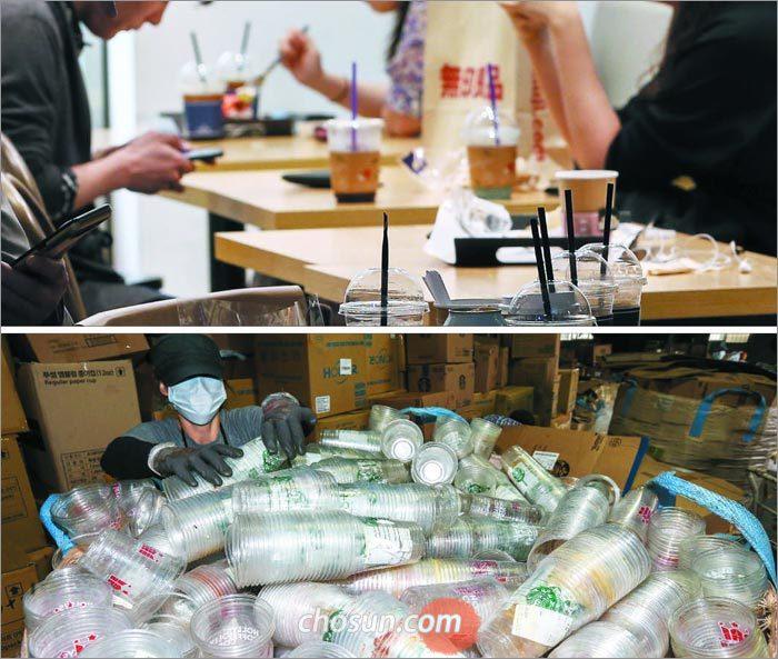 무심코 쓴 일회용컵…  매일 산처럼 쌓인다