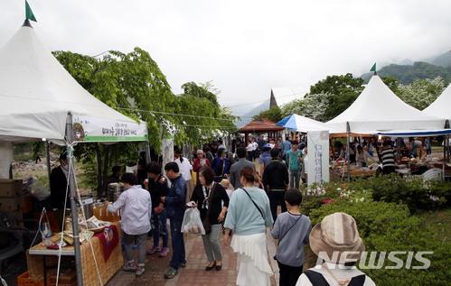 가족과 함께 즐겨요! 하동 야생차·꽃양귀비 축제 동시 개막