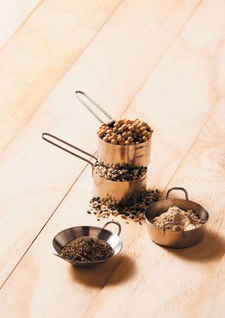 발효 콩 단백질