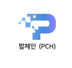 빗썸이 올린 팝체인 상장검토보고서 표지/빗썸 캡처