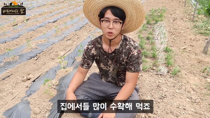 청년 농부 오창언씨가 텃밭에 앉아 수확해 먹는 작물들을 소개하는 장면.