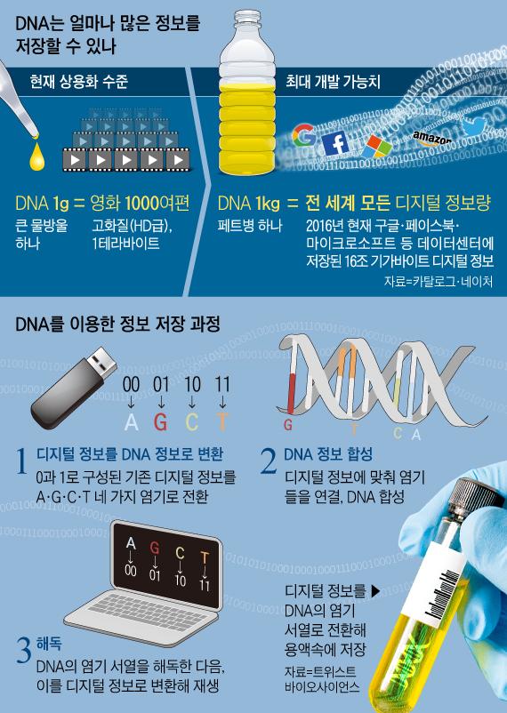 DNA는 얼마나 많은 정보를 저장할 수 있나
