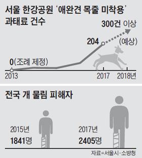 전국 개 물림 피해자 수 그래프
