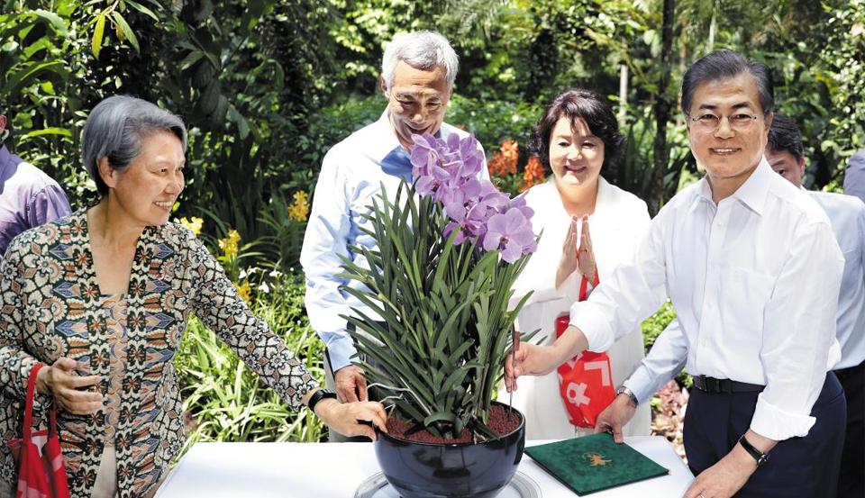 싱가포르서 탄생한 '문재인·김정숙 난초' - 싱가포르를 국빈 방문 중인 문재인(맨 오른쪽) 대통령과 부인 김정숙(왼쪽에서 셋째) 여사가 12일 오후 리셴룽(왼쪽에서 둘째) 싱가포르 총리 부부와 보타닉 가든(Botanic Garden)을 방문해 '난초 명명식'을 갖고 있다. 싱가포르 정부는 귀빈에 대한 예우의 의미로 새로 배양한 난초에 해당 국가 정상의 이름을 붙인다. 이번 난초 이름은 '문재인·김정숙 난'이다.